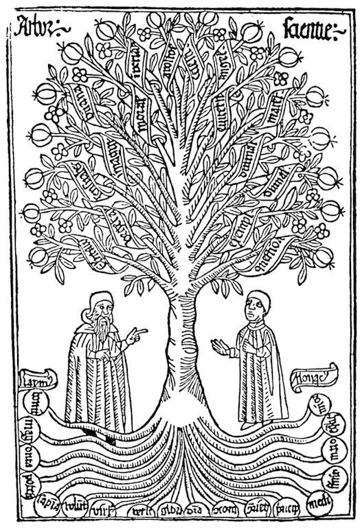 Arbor-scientiae1-702x1024