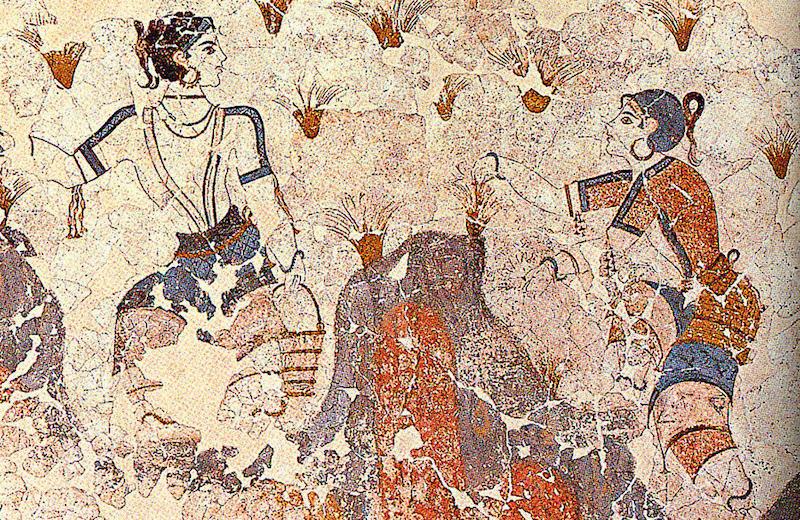 saffron-gatherers-andonis-katanos
